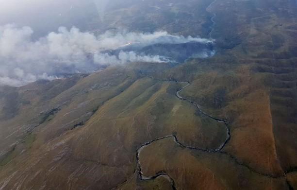 Prenden fuego para un asado y se queman mil hectáreas en Argentina